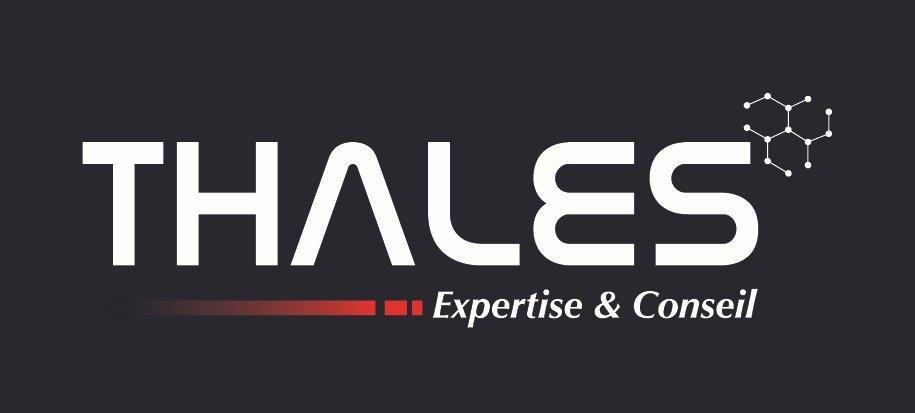 Logo Thales Expertise & Conseil